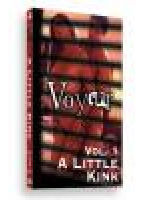 Voyeur Volume 1 - A little Kink